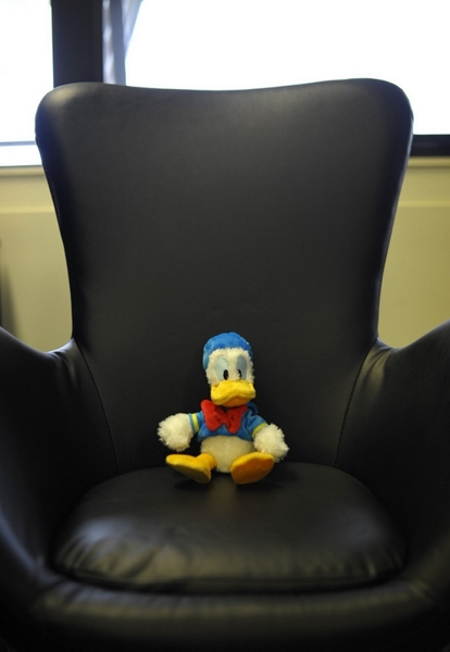 Duck (10)