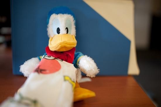 Duck (16)