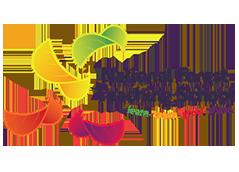national forest teaching school logo